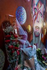 HC9Q0702-1 (rodwey2004) Tags: flowers musician death mural artist mourning rip streetphotography tribute fans superstar wallpainting brixton davidbowie aladdinsane davidrobertjones jimmyc jamescochran manyfacesofbowie
