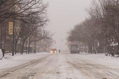 Snowstorm Jonas-2 (Diacritical) Tags: snow brooklyn iso800 pattern f45 jonas blizzard 70 2470mmf28 0ev nikond4 nikoncorporation sec secatf45 douglascpalmer2014 january232016 snowstormjonas