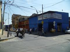 CarolinaPolo