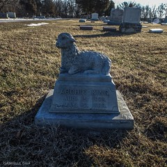 The World S Best Photos Of Graveyard And Lamb Flickr