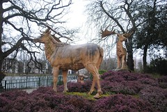 Megaloceros family (zawtowers) Tags: park irish lake green london wet by afternoon place crystal 10 walk south victorian saturday statues palace grade chain created trail rainy elk lower february overlooking stroll 13th section listed 1854 beckenham crystalpalacepark dinasour megaloceros i benjaminwaterhousehawkins