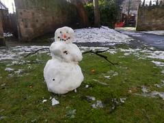 Snow 001 (NikWatt) Tags: snow nikon great scots greatphotographers edinburghphotographers nikwatt nikonccoolpix