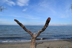Seascape (fil_____) Tags: blue sea seascape seaside nikon outdoor ngc greece serenity thessaloniki deepblue thermaikos peraia      neoiepivates   nikond3300