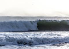 Ano Nuevo State Park-7952 ( / Jiayin Ma) Tags: california park beach water 1 sand state wave route ao ano nuevo seaocean