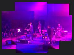 Scritti Politti collage (Jim Davies) Tags: london collage gig livemusic band picasa photomontage joiner iphone roundhouse scrittipolitti rhodri greengartside
