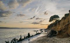 Shoreline on the Solent (Honor Lansdell) Tags: trees sunset england sky beach clouds landscape photography countryside sand nikon waves photographer tide shoreline hampshire shore isleofwight solent february southampton newforest groynes lepe lepebeach amateurphotography nikond3300 d3300
