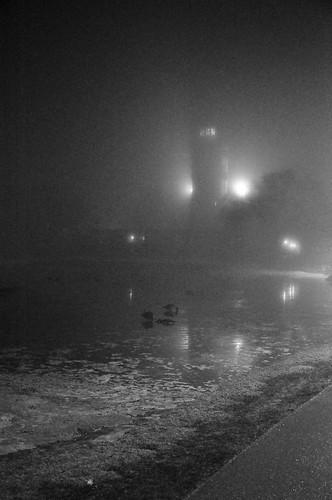 Fog _2016_03_13_20-37-57_DSC_6751_©LindsayBerger2016