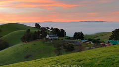 Spring Sunrise in the Backyard (Jaykhuang) Tags: california sunrise burn valley bayarea eastbay livermore rollinghills lowfog earlyspringgreen jayhuangphotography
