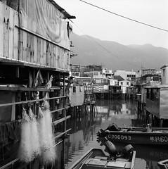 Village on the Sea (Purple Field) Tags: china sea bw 120 6x6 tlr film monochrome analog rolleiflex zeiss port walking square hongkong village kodak tmax iso400 carl medium      f28 planar   80mm   28c        canoscan8800f