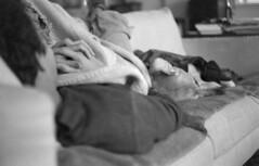 Theoretical Sofa (macromary) Tags: camera leica blackandwhite bw dog slr film yellow vintage lab labrador nap bokeh relaxing sofa labradorretriever manual naptime leicaflex afternoonnap efke leitz efke100 primelens efkefilm leicaflexsl sleepingonthesofa