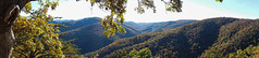 Blue Ridge Panorama in the Fall Sunset (kamikazekyle10) Tags: trees panorama mountains tree fall nature leaves forest blueridgeparkway