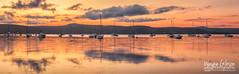 Saratoga - Sar007 (wgphotographic) Tags: sunset saratoga