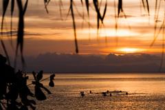 Sunset swim (craighamnett) Tags: sunset sea orange cambodia rabbitisland