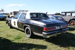 FML 305 (ambodavenz) Tags: new car buick brothers south blues canterbury zealand sabre le tribute limited rangitata
