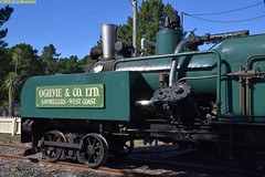 DS_V_0_McLeansIsland_09April2016 (nzsteam) Tags: price train island traction engine railway scene steam engines locomotive boiler boilers mcleans sawmilling