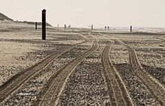 Follow the tracks they say. #Texel #wadden #waddeneiland #noordzee #northsea #strand #beach #spoor #track #sand #zand #canon #SIGMA #nature #natuur #justin #sinner #pictures #texelpics #amazing #photo #paal #pole #wind #backlight #tegenlicht #schelp (JustinSinner.nl) Tags: pictures justin beach nature backlight strand canon photo wadden waddeneiland amazing sand track wind tracks noordzee natuur sigma follow pole northsea they say sinner schelp texel spoor zand tegenlicht paal texelpics