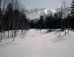 Mt.Oputateshike from Shirogane road (threepinner) Tags: ski japan spring hokkaido skiing negative   biei fujica hokkaidou 80mm f35  selfdeveloped iso160 northernjapan  ebcfujinon mountainsnaps gf670  mtoputateshike  taisetsunationalpark