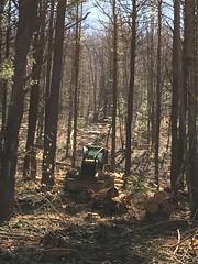 IMG_5505 (Marshen) Tags: logging skidder cornishhollow