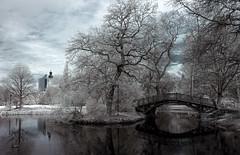Park im Frühling (inmyeyespictures) Tags: park leipzig rathaus teich frühling neues uniriese infrarot 700nm