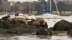 Pointe d'Arradon (FauxK@L (Thanks for your comments)) Tags: mer bretagne bateaux morbihan paysages arradon