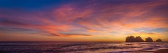 View Large!!! Mega Pano Sunset, First Beach, Olympic Peninsula (dezzouk) Tags: sunset beach washington nationalpark pacificnorthwest olympic peninsula lapush firstbeach quileute