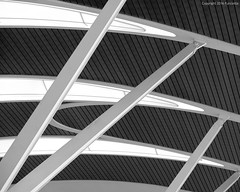 steel, glass and wood (Furcletta) Tags: china wood building window glass blackwhite airport construction shanghai steel indoor ceiling chn roofconstruction 70200mm28gvrii