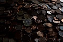 Euro (adrivallekas) Tags: light money metal one coin europa europe european coins euro can pasta cents uno eur cobre dinero moneda  monedas 1euro centimos niquel canonef24105mmf4lisusm numismtica flickrelite canoneos6d