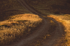 road (avvblanc01) Tags: road sunset warm soft roads softtones warmtones canonphotography canon7d