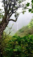 17 - hanakapiai (razel.mella) Tags: hawaii outdoor hike falls waterfalls kauai adventures hanakapiai