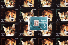 Macro Mondays #Not Like The Others (sarahellenspringer) Tags: puppies stamps kittens collection numbers multiples catsanddogs notliketheothers macromondays