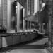 Walkway & Columns