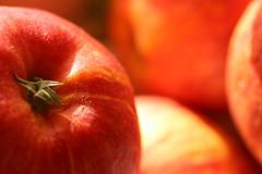Red Apples (gripspix (catching up slowly)) Tags: wallpaper apple background apfel hintergrund pruney notfresh schrumpelig backgrips 20160423