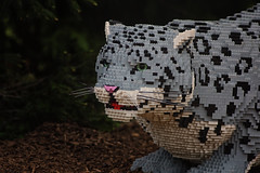 Lego Snow Leopard (Vincent1825) Tags: animals lego pentax ani 200mm louisvillezoo