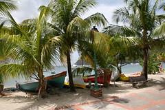 Antilles 2012 099