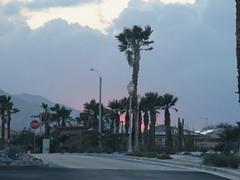 April 27, 2016 (3) (gaymay) Tags: california gay sunset love sign clouds desert palmsprings palmtrees stopsign