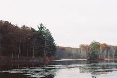 (Doug J.) Tags: autumn lake fall film nature water leaves 35mm pond woods cloudy kodak walk hike trail portra f28 ai 160