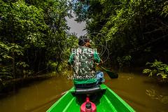 NO_Tefe0079 (Visit Brasil) Tags: travel brazil tourism nature horizontal brasil amazon rainforest natureza turismo norte amazonas ecoturismo ecotourism externa nutico tef comgente diurna riosolimes reservamamirau visitbrasil