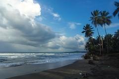 Dominican Rpublic, North coast (markdanze) Tags: dominicanrepublic shore northcoast riosanjuan
