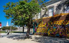 RX100-5069 (danguerin75) Tags: graffiti larochelle rue rx100