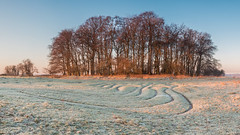 Winter's glow (Wizmatt) Tags: trees winter sunset sun nature st sunrise downs landscape photography dawn chalk iron frost glow fort matthew wildlife south hill january down mini medieval historic age maze winchester catherines turf beech hillfort cokin sunshire wisby theclump minimaze canon70d matthewwisby