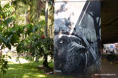 Brsil 2016 SP Graffitis-006 (CZNT Photos) Tags: streetart brasil saopaulo graff brsil artmural alaincouzinet cznt