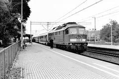 Loco 234 242-6  |  Rzepin  |  2008 (keithwilde152) Tags: blackandwhite monochrome station train diesel outdoor poland express passenger 2008 locomotives rzepin br234