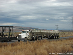 """Central Refrigerated Peterbilt 386 daycab with """"Belt Trailer"""" (Michael Cereghino (Avsfan118)) Tags: belt central grain transportation pete swift feed trailer heavy peterbilt haul refrigerated 386 hauler daycab"""