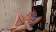 IMAG0557 Neko cuddle (drayy) Tags: orange cat mainecoon neko ggg oreengeness thebiggestgroupwithonlycats