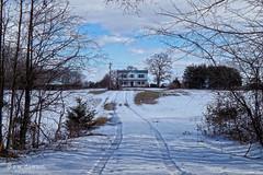 Tracks in the Snow to Windy Hill Farm (r.w.dawson) Tags: snow virginia farm va wiinter tiretracks windyhillfarm hanovvercounty