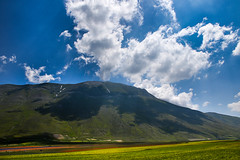 FIORITURA (elisanobile) Tags: flowers cloud mountain montagne canon landscape nuvole fiori montagna cloudporn paesaggio norcia castelluccio appennini castellucciodinorcia canon7dmarkii
