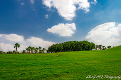 Bliss (Sherif Ali's Photography) Tags: blue trees sky white green grass clouds bliss bless