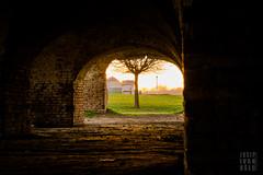 (josip ivanusec) Tags: old roof sunset tree brick lamp grass dark bench woods outdoor osijek croatia