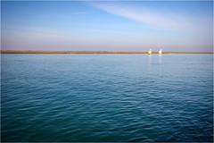 141101 burano 650 (# andrea mometti | photographia) Tags: laguna venezia colori burano merletti