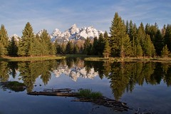 tranquility in the TETONS (laura's POV) Tags: morning travel trees sky mountains west nature water forest pond unitedstates peaceful calm jackson landing western wyoming tetons majestic magical range mothernature jacksonhole grandtetonnationalpark destinations gtnp schwabachers lauraspointofview lauraspov